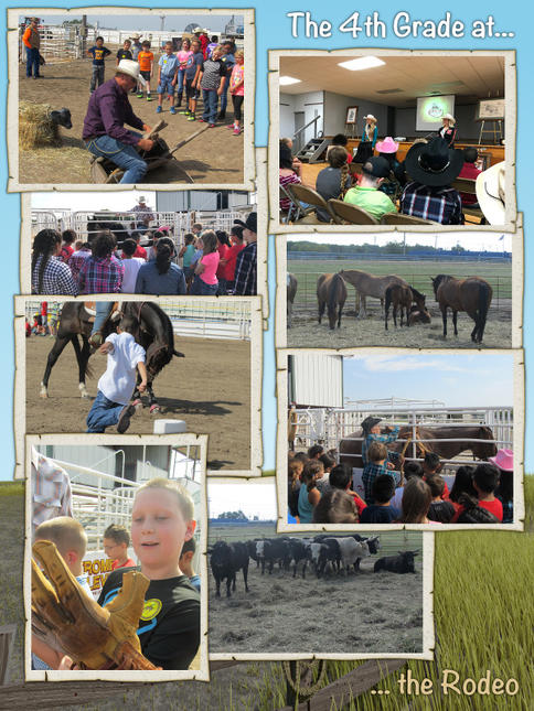 The 4th Grade Goes to the Rodeo - August 2017