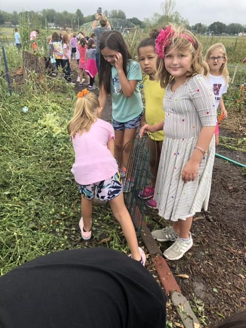3rd Grade Learns About Destruction of Nature