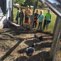 /assets/site/images/hawthorne/photo gallery/Field Trips/1st Grade Stuhr/img-3614.JPG
